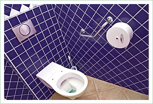 ABS - A Bathroom Solution disabled toilet